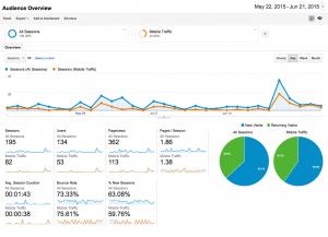 Google Analytics screenshot site traffic